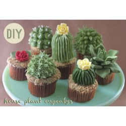 Kaktusi #1